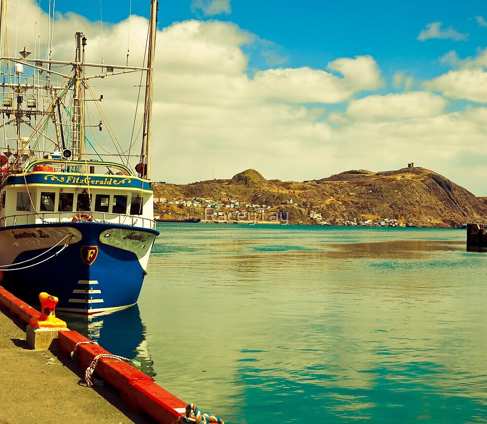 Harbour in St. John's, NL. by RaceyTay