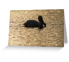 Pelican Silhouette On Golden Water Greeting Card