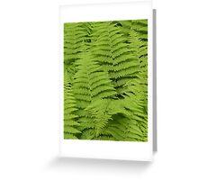 Ferns Fairway Greeting Card