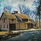 Shadow Play on Masker's Barn by Jane Neill-Hancock
