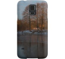 Gray and Amber - an Early Winter Morning on the Lake Shore Samsung Galaxy Case/Skin