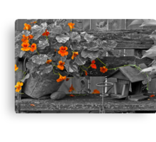 Nasturtiums In The Breeze - Selective Color Canvas Print