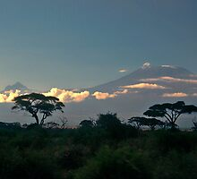 Mt Kilimanjaro by Marylou Badeaux