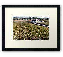 Fields Of Burgundy Framed Print