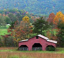 Smoky Mountain Barn by WTBird