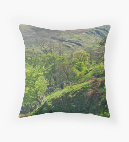 Coverdale Throw Pillow
