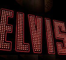 Elvis  by Sally P  Moore