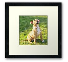 My tongue can touch my nose can yours? Framed Print