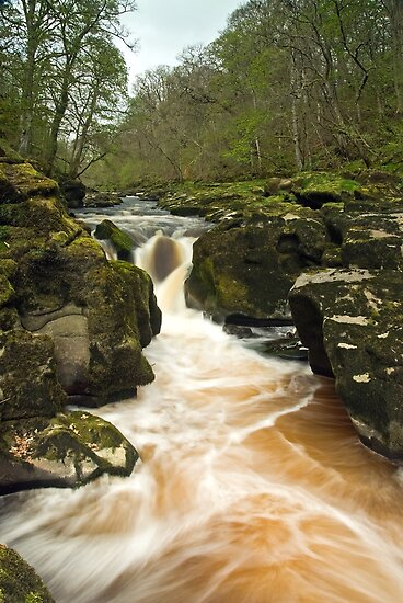 The Strid by Steve  Liptrot