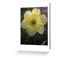 Yellow/White Mix Greeting Card