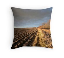 Winter Perspective Throw Pillow