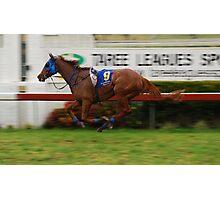 Riderless Horse Photographic Print