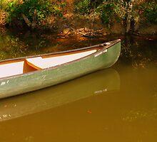 On Big Darby Creek, Plain City, Oh. by CynLynn