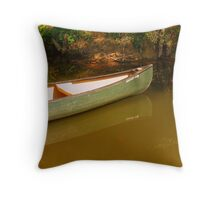On Big Darby Creek, Plain City, Oh. Throw Pillow