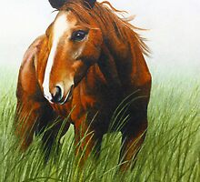 Horse In The Wind by Maria Hathaway Spencer