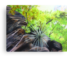 Zions Canyon # 4 Canvas Print