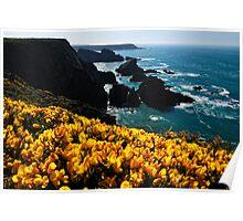 Colours, Pembrokeshire Poster