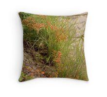 Autumn colours in Linden Throw Pillow