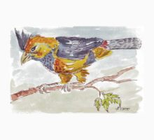 Crested Barbet in my garden Kids Clothes