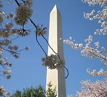 Washington Monument by TabithaPayne