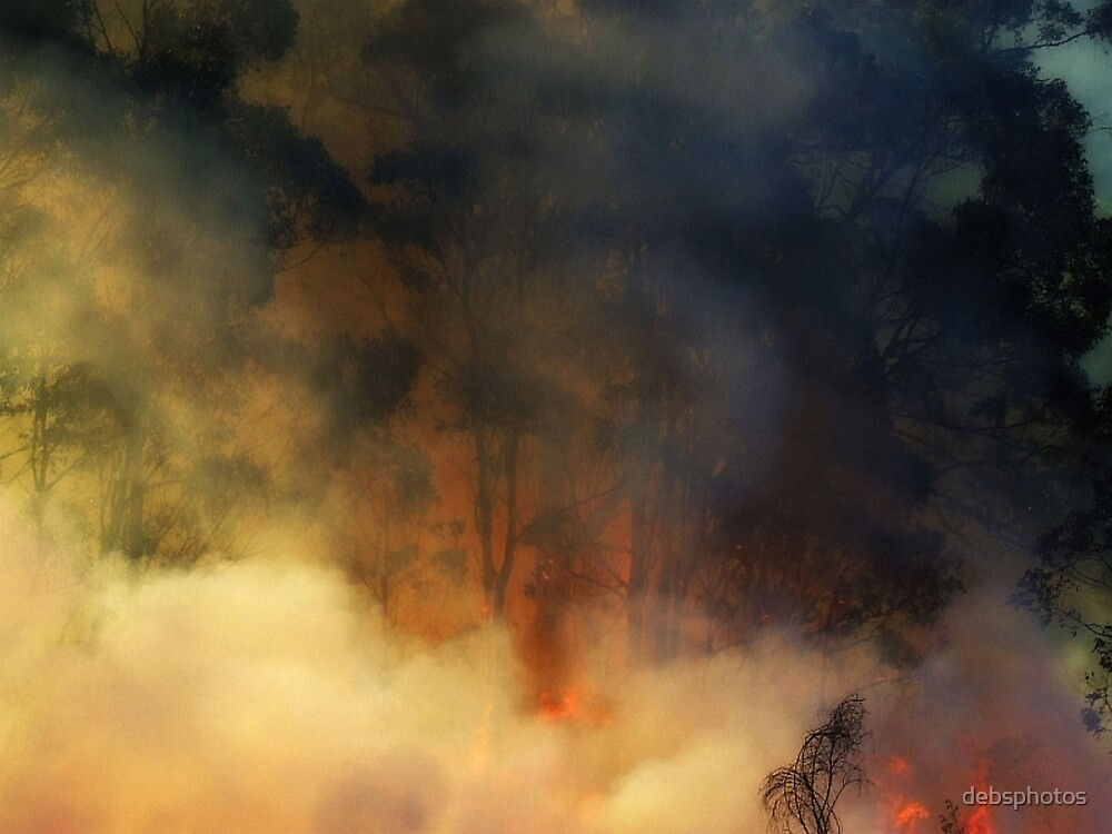 """""""Combustion"""" by debsphotos"""