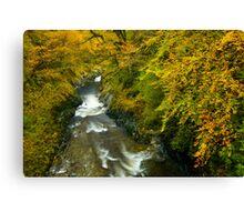 Automn Colours, Snowdonia Canvas Print