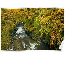 Automn Colours, Snowdonia Poster