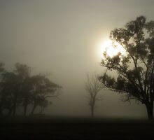 Morning Mist by Norman Repacholi