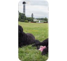 Special Portuguese Water Dog iPhone Case/Skin