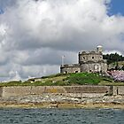 St Mawes Castle from the Ferry by Rod Johnson