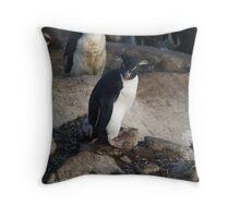 Rock Hopper Penguin - Saunders Island, Falkland Islands Throw Pillow