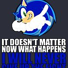 Sonic It Doesn't Matter  by ZoneMetropolis