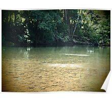 Skip - The Mulgrave River at Ross & Locke - Queensland - Australia Poster