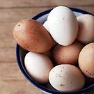 eggs by sapaho