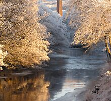 Wintry Scene From One Bridge to Another by jacqi