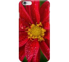 Bright Red iPhone Case/Skin