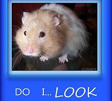 Do I LOOK like? by budrfli