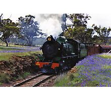 Pitchie Richie Railway Photographic Print