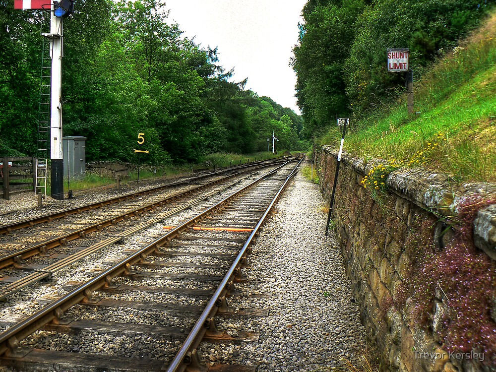 Down the Tracks - Goathland,North Yorkshire by Trevor Kersley