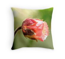 Water Avens- Geum Rivale Throw Pillow