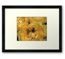Beetle Dance Framed Print
