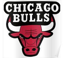 Chicago Bulls Logo Poster