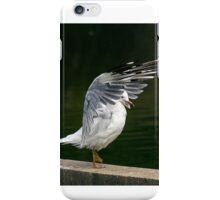The Karate Gull prepares...... iPhone Case/Skin