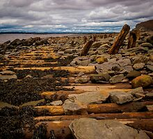 Joggins Fossil Cliffs by mlphoto