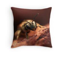 Springtime Bee Throw Pillow