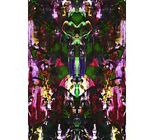 Abstract Mindmirror Acrylic Painting Photographic Print