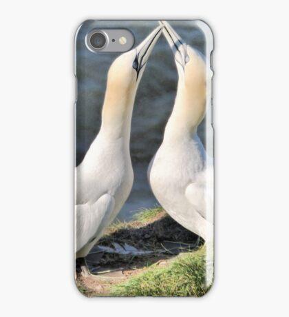 Gannets on Bempton Cliffs. iPhone Case/Skin