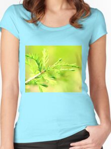 Cypress in Spring Women's Fitted Scoop T-Shirt