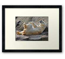 polar play Framed Print