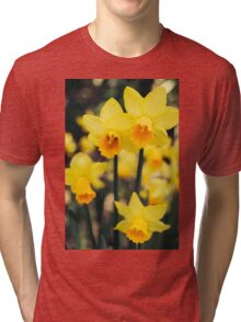 Yellow Daffodil Flowers Tri-blend T-Shirt